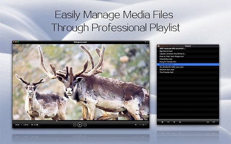 Play and Manage All Videos Effortlessly